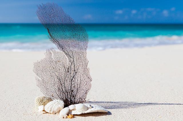 Despedida de soltero con fiesta en la playa
